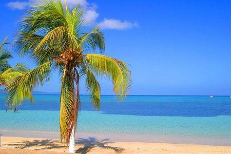 Last minute Jamaica