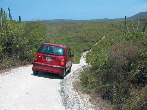 Jamaica autohuur